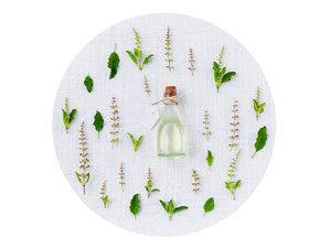 corso fitoterapia botanica eunam-naturopatia erbe medicinali