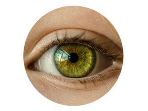 Corso iridologia a roma - eunam naturopatia - iride