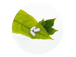 farmacodinamica eunam scuola naturopatia roma